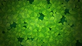 рассеянный : St. Patricks animated clovers against a green background. For use as a general backdrop, design element or as an overlay for placement of text or other copy.