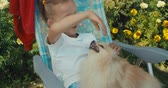 pomeranian spitz : Happy little girl playing with dog in garden. Sunny summer day with a pomeranian spitz. Pretty kid sitting in chair outdoors and playing with puppy. 4k raw slow motion footage video 60 fps Stock Footage
