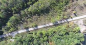 ormanlar : Low Level Flying Over Road In Forest Green Trees Stok Video
