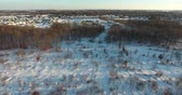 kasım : Flying Over Clearcut Forest In Winter Aerial View