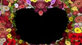 Animation of swirling flowers forming a heart silhouette on a black background. Template for greetings for wedding, Valentines Day, mothers Day, family Day, birthday.