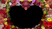 Animation of swirling flowers forming a heart silhouette on a black background. Template for greetings for wedding, Valentines Day, mothers Day, family Day, birthday. Loop video.