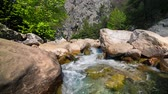 flow : Sunny morning in a Goynuk canyon. located in District of Kemer, Antalya Province. Beautiful spring scenery in Turky, Asia. Full HD video (High Definition). Exported from RAW file.