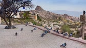 pomba : Famous pigeons valley in the Cappadocia. Sightseeing area in the Uchisar village, Turkey, Asia. Full HD video (High Definition). Exported from RAW file.
