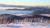 Foggy winter landscape in the Carpathian mountains with rolling hills and valleys in golden morning light