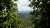 overlooking : A view of the surrounding countryside from the top of Amicalola Falls. Stock Footage