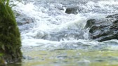 renk : A mountain creek rushes over the rocks.