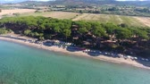 toscano : Aerial view of Tuscan Countryside Pinewood and Beach Vídeos