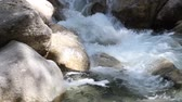 britânico : Water Flowing over Rocks and Boulders from Shannon Falls in Vancouver BC Canada Panning Movie 1920x1080 Vídeos