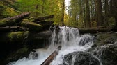 High definition movie of impressive Panther Creek Falls with plunging water audio sounds in Washington State 1080p hd