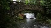 High definition 1080p movie of Whatcom Falls with a old stone bridge with moss and ferns in Bellingham