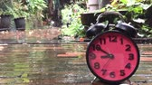 running clock on a garden floor in rainy days