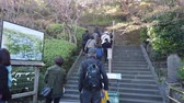 szerzetes : KAMAKURA, JAPAN - 2019 March 21: People are visiting Hase-Dera shrine. Stock mozgókép