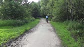 Bicyclist on a paved road in the forest Stock Footage