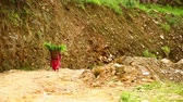 heavy : Local woman carrying leafs on her back down mountain trail, Pokhara, Nepal Stock Footage