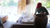 organic : MEKONG DELTA, VIETNAM - MAY 2014: noodle makers Stock Footage