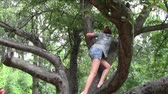 Girl playing in gnarled tree