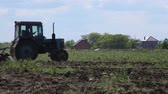 magpies : Tractor plowing field