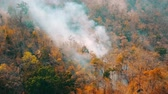 качество : Smog of forest fires. Deforestation and Climate crisis. Toxic haze from rainforest fires. Aerial video 4k.