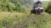 Diesel passenger train moves outdoors Stok Video
