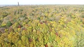 sapporo : Aerial: of primeval forest autumn leaves  7  October 17, 2015 in Japan of the shooting in HokkaidoLandscape of primeval forest that fall foliage views from the sky. Panorama.