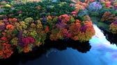 расцвет : Aerial photography: taken by multicopter of fall foliage at its peak  1 Стоковые видеозаписи