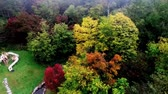 расцвет : Aerial photography: fall of brilliantly colored foliage trees Lake   Стоковые видеозаписи