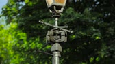 nature close up : Street lamp Candelabrum post Stock Footage