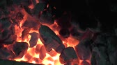 ash : Fire flames raising in a dark background Stock Footage