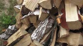 kůra : Wood made from birch (cut version). Pile of chopped firewood ready for winter. Birch firewood. Dostupné videozáznamy
