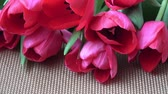 Wonderful red spring tulips on the table. Fresh flowers