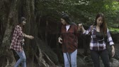 relaxovat : Asian young girl group walking go to waterfall travel in nature Dostupné videozáznamy