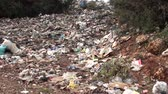 stink : Landfill and a puppy Stock Footage