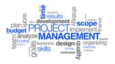 typografia : Project Management word Cloud on white background