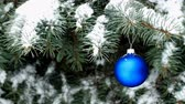 Blue Christmas ball hanging on blue spruce branch in snowy weather outdoor