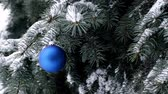 Blue Christmas ball hanging on branch of spruce and snowing Стоковые видеозаписи