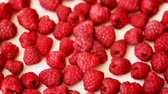 Fresh ripe raspberries, turning around Стоковые видеозаписи