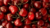 Ripe juicy cherries used as background Стоковые видеозаписи