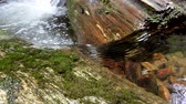 seixos : Water flowing in a creek runs over and around a log immersed in water