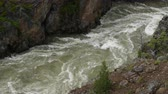 yellowstone : Water Rushing Through Hellroaring Creek in Yellowstone Stock Footage