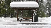 освещение : Snow Covered Bus Stop with snow falling during blizzard