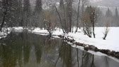 Snow Falls on Calm Merced River in Yosemite Valley 動画素材