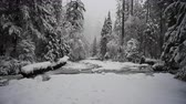 Snow Falls on Frozen Creek and Lower Yosemite Falls During Winter Storm Stock Footage