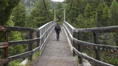 yellowstone : Woman Crosses Suspension Bridge in Yellowstone Wilderness Stock Footage
