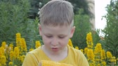 sabugo : boy is eating corn cobs. child in a yellow T-shirt on a background of yellow flowers with an appetite snacks.