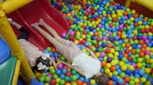 tréfa : Childrens playroom. Children play in a dry basin filled with plastic colored balls.