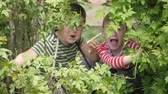 vyděsit : The boys look out from behind the green branches and make grimaces.