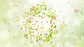일찍 : spring in the air, slow motion spring background with leaves bokeh and petals