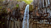 altıgen : Svartifoss waterfall. Skaftafell National Park, Vatnajokull glacier, Iceland, Europe. Stok Video