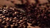 flavour : Coffee beans with star anise on barrel, cam moves to the right, close up
